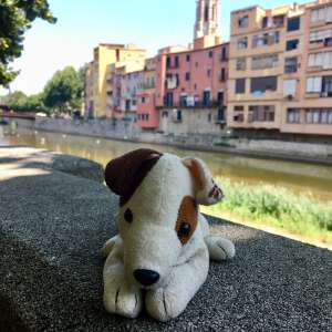 "Lost: Stuff Toy Dog: ""Wishbone"""